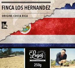 Café moulu pour cafetière filtre : Costa Rica - Finca Los Hernandez - 250g - Cafés Lugat
