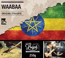 Café moulu Bio pour cafetière filtre : Ethiopie - Moka Waabaa - 250g - Cafés Lugat