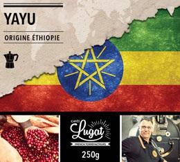 Café moulu pour cafetière italienne : Ethiopie - Moka Yayu - 250g - Cafés Lugat