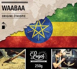 Caf� moulu Bio pour cafeti�re � piston : Ethiopie - Moka Waabaa - 250g - Caf�s Lugat