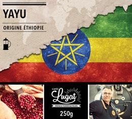 Caf� moulu pour cafeti�re � piston : Ethiopie - Moka Yayu - 250g - Caf�s Lugat