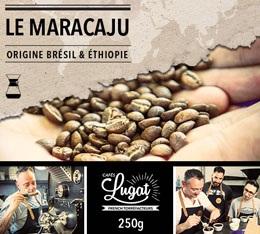 Café moulu pour cafetière Hario/Chemex : Le Maracaju (anciennement Santa Claus) - Mélange Gourmand - 250g - Cafés Lugat