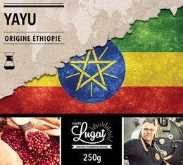 Café moulu pour cafetière Hario/Chemex : Ethiopie - Moka Yayu - 250g - Cafés Lugat
