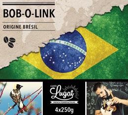 Caf� en grains : Br�sil - Bob-o-link - 1Kg - Caf�s Lugat