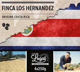 Caf� en grains : Costa Rica - Finca Los Hernandez -1Kg - Caf�s Lugat
