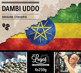 Caf� en grains : Ethiopie - Moka Dambi Uddo - Torr�faction Filtre - 1Kg - Caf�s Lugat