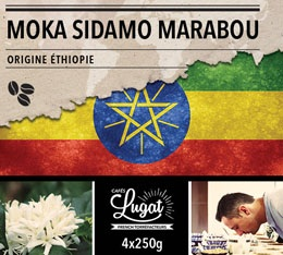 Café en grains : Ethiopie - Moka Sidamo Marabou - 1Kg - Cafés Lugat
