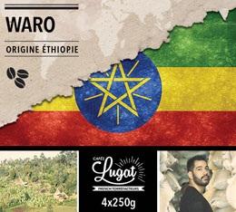 Café en grains Bio : Ethiopie - Moka Waro - 1Kg - Cafés Lugat