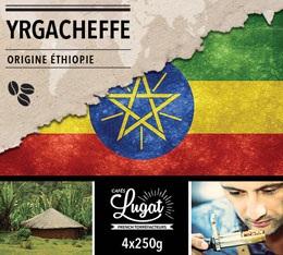 Café en grains : Ethiopie - Moka Yrgacheffe - 1Kg - Cafés Lugat