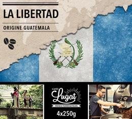 Café en grains : Guatemala - La Libertad - 1Kg - Cafés Lugat