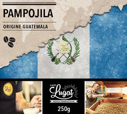 Caf� en grains : Guatemala - Pampojila - 250g - Caf�s Lugat
