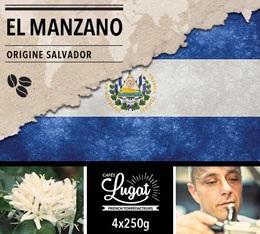 Caf� en grains : Salvador - El Manzano - 1Kg - Caf�s Lugat