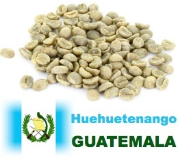 Café vert Huehuetenango El Maya - Guatemala - 1kg