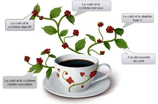 effets café