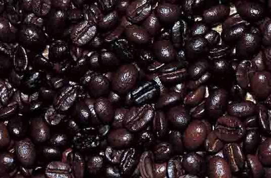 coffee_bean.jpg__1202×1202_