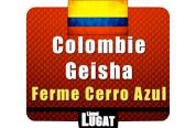 cafe-grains-arabica-geisha-colombie