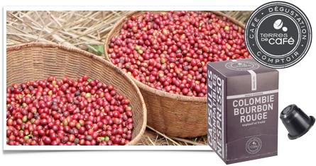 bourbon rouge terre de cafe
