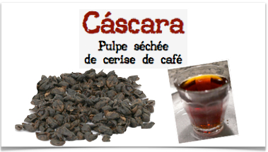 infusion-cascara-de-cafe-bourbon-rouge