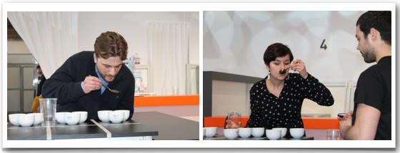 cup-tasting-candidats