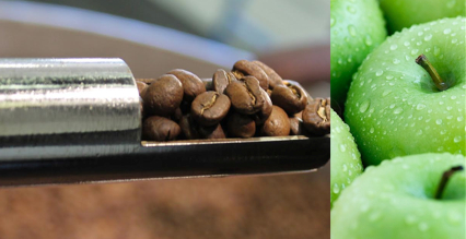 cafe-grains-burundi-notes-pomme-verte