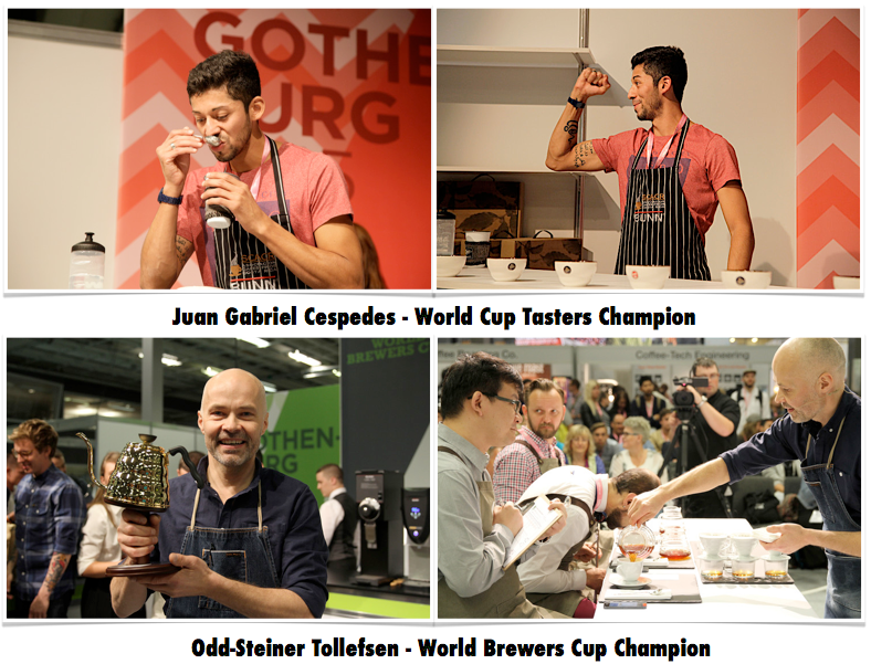 world-championship-cuptaster-brewerscup