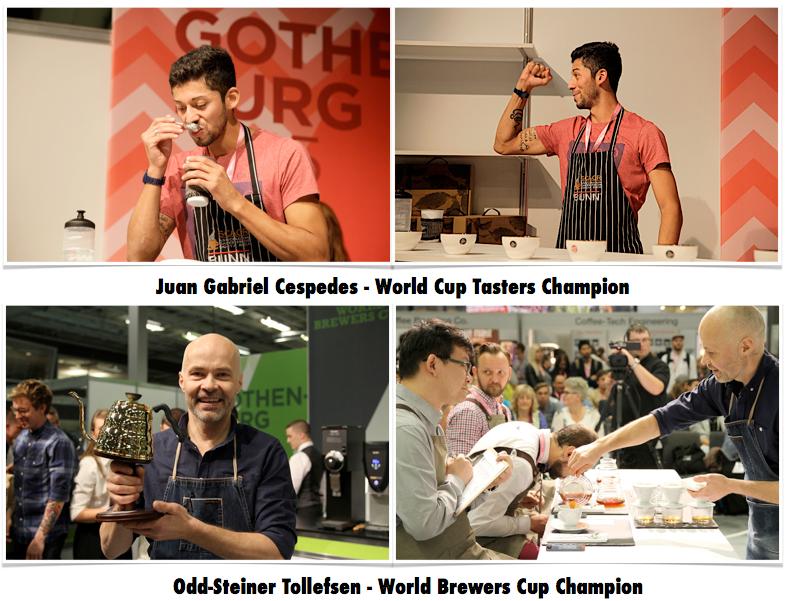 world-championship-cuptaster-brewerscup