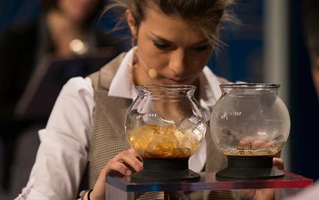 charlotte-malaval-championne-barista
