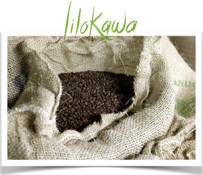 sac-a-cafe-vert-logo-lilokawa