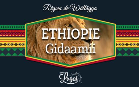 gidaamii_blog