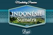 sumatra_blog_vignette