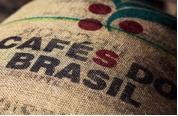 cafe-santa-rita-bresil-cafes-lugat-2