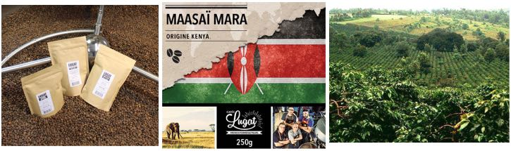 maasai-mara-blog