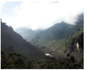 cafes-huehuetenango-guatemala