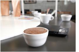 roue-des-saveurs-scaa-cafe