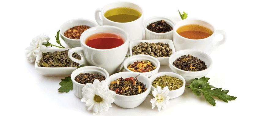 Thé, lequel est le meilleur pour la santé ? Quel thé choisir ?