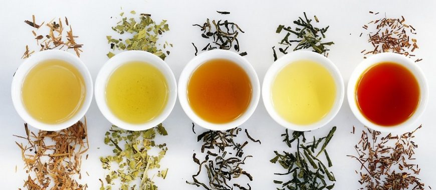 Green tea, black tea or white tea: what's the difference?