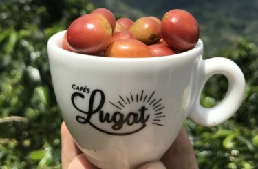 Cafés Lugat: Discovering freshly roasted coffee beans
