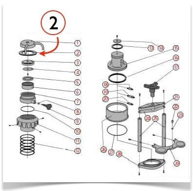 schéma cafetière bacchi