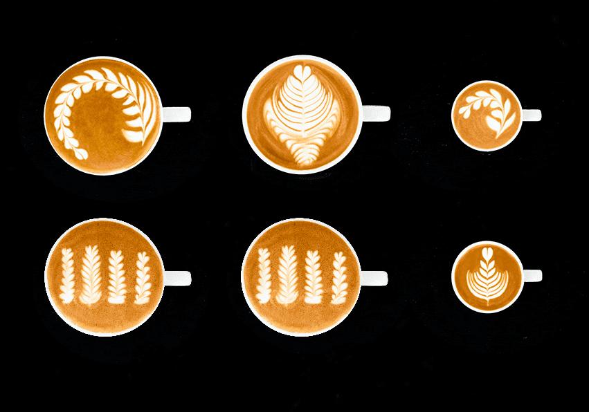 niveau noir Latte Art Grading System