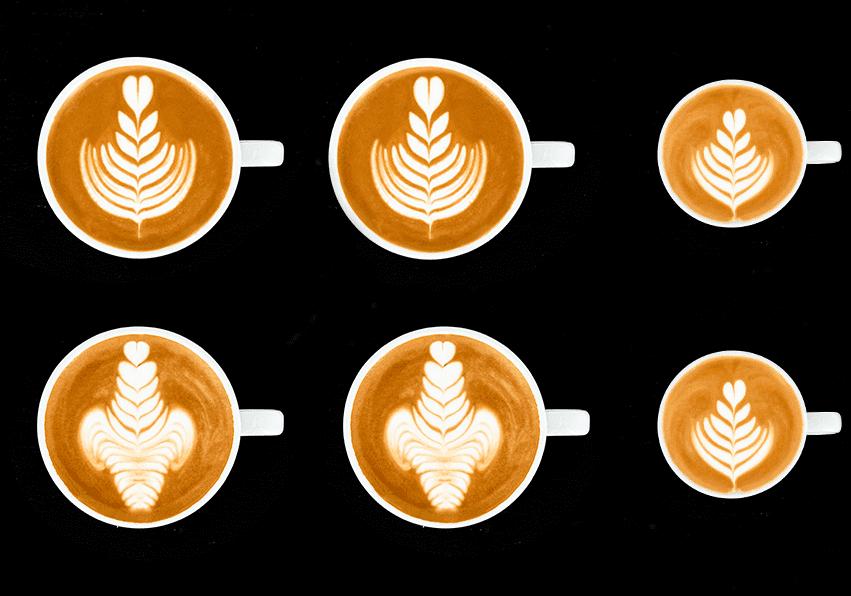 niveau rouge Latte Art Grading System