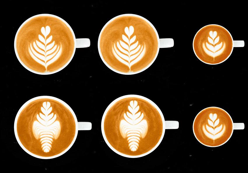 niveau vert Latte Art Grading System