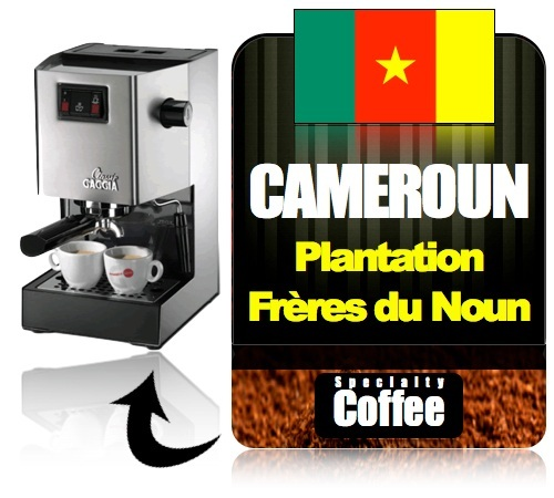 caf moulu pour machine expresso fr res du noun cameroun. Black Bedroom Furniture Sets. Home Design Ideas