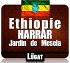 """Caf� en grains Moka Harrar """"jardin de Mesela""""- Ethiopie - 250 g - Lionel Lugat"""