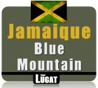 Caf� en grains Blue Mountain - Jama�que - 125g - Lionel Lugat