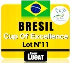 Caf� en grains Cup of Excellence 2013 Lot n�11 - Br�sil - S�o Francisco de Assis - 125 g - Lionel Lugat