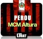 Caf� en grains MCM Altura P�rou - 250 g - Lionel Lugat