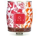 Caf� Delta Ruby - boite 3kgs