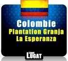 Caf� en grains Plantation Granja La Esperanza - Colombie - 250 gr - Lionel Lugat