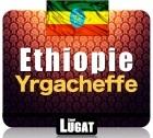 Caf� en grains Ethiopie Yrgacheffe - 250 gr - Lionel Lugat