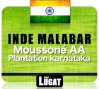 Caf� en grains Inde Malabar Mousson� AA - 250 gr - Lionel Lugat
